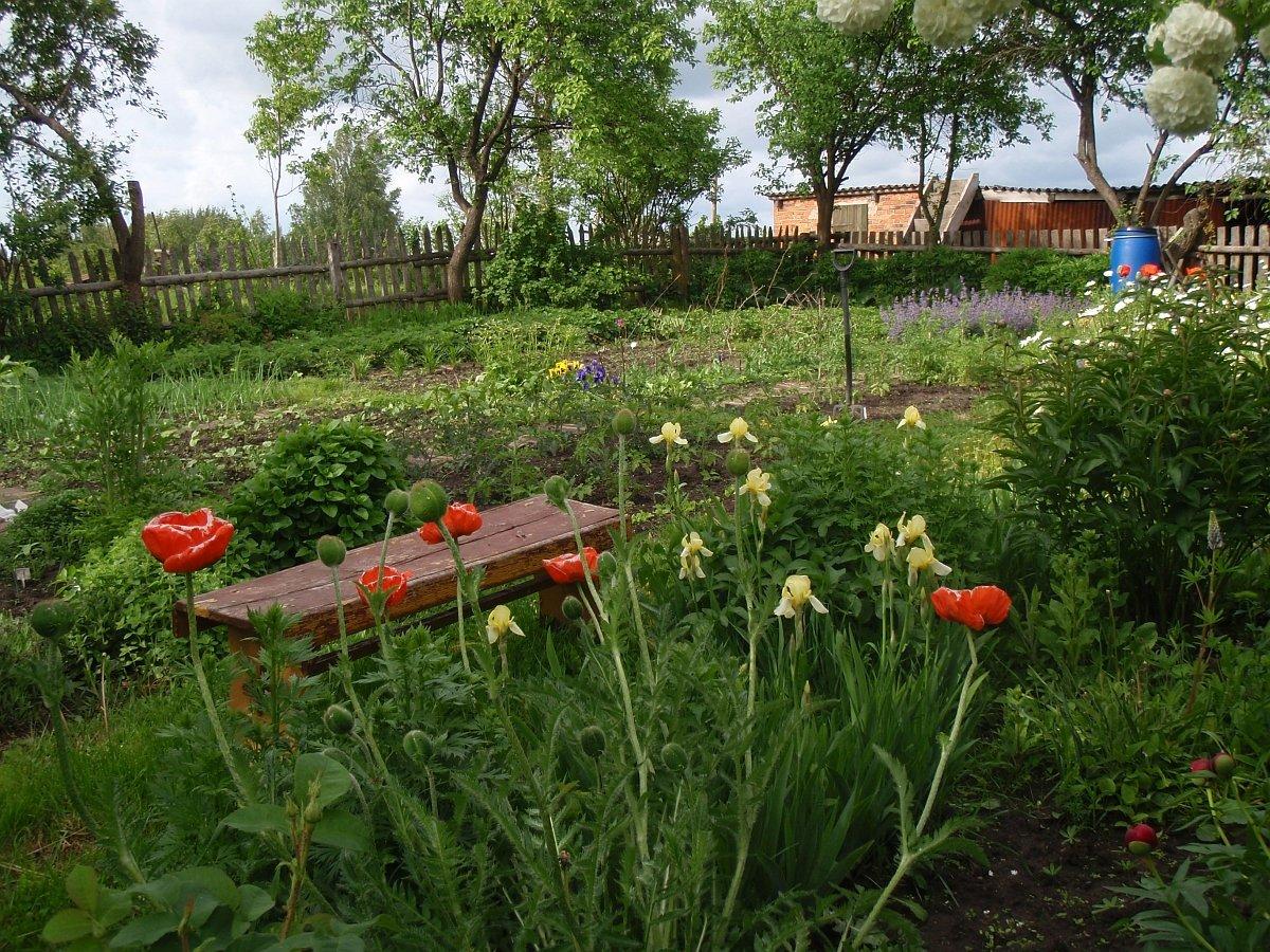 agroturystyka-sierzno-bytow-kaszuby_przydomowy-ogrod